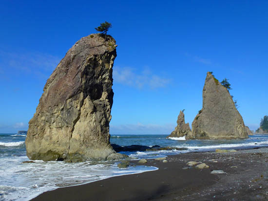 Protrails Rialto Beach To Chilean Memorial Photo