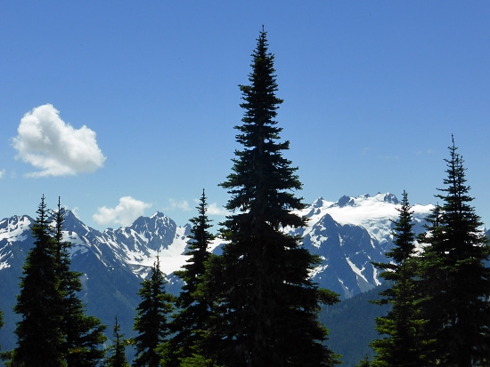 Protrails Heart Lake Photo Gallery Olympic National
