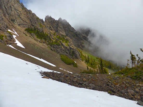 ProTrails | Heather Park Trail, Photo Gallery, Olympic National Park ...
