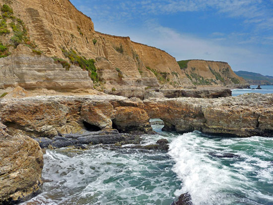 Image result for horse trail to sculpture beach point reyes