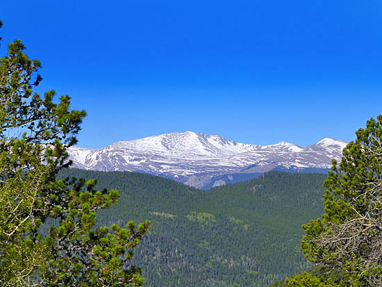 View of Mt Evans (14,264') from Bergen Peak (9,708')