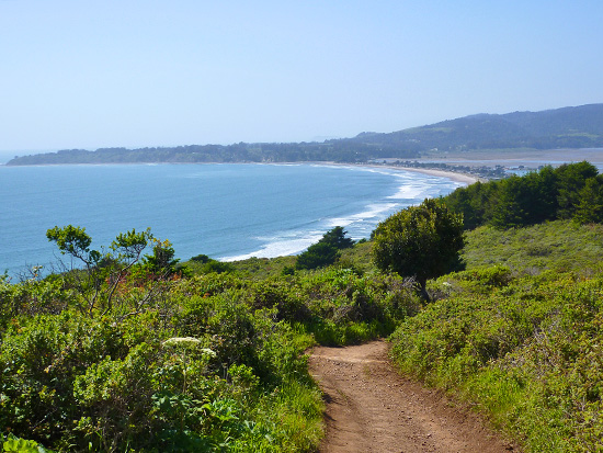 Open coastal hills on the Dipsea Trail to Stinson Beach