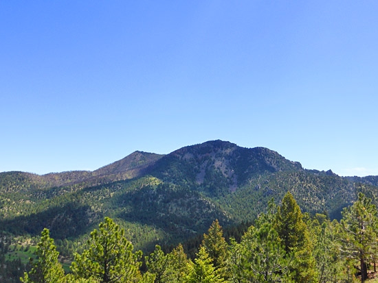 South Boulder Peak seen from the Walker Ranch Loop (8,549')