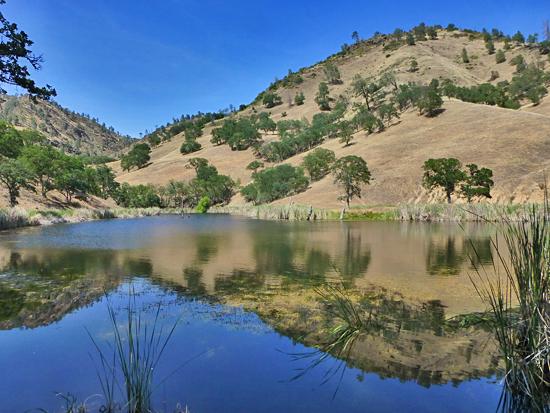 ProTrails | Paradise Lake - Paradise Flats, Henry Coe State Park