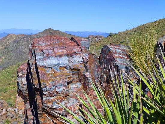 Felsic quartz in the McDowell Mountains Arizona