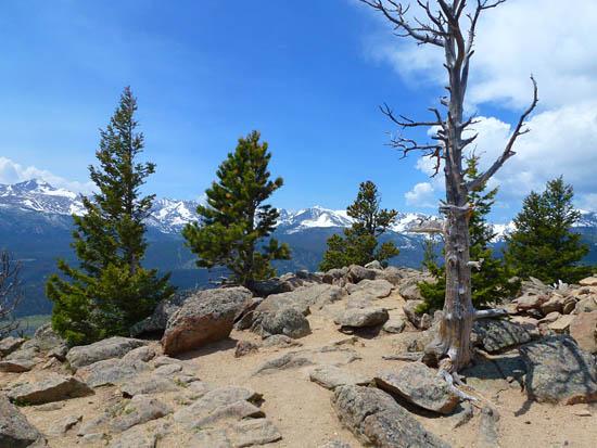 Protrails Deer Ridge Junction Deer Mountain Trail