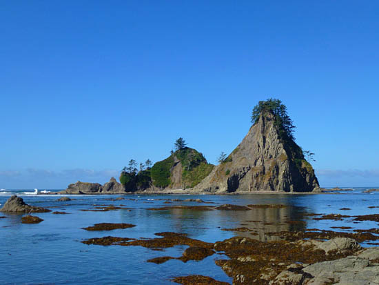 Protrails Rialto Beach To Chilean Memorial Photo Gallery Olympic National Park Washington