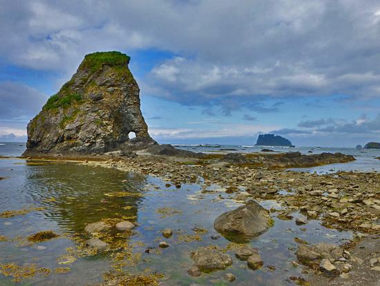 protrails ozette coast loop sand point beach cape alava trail