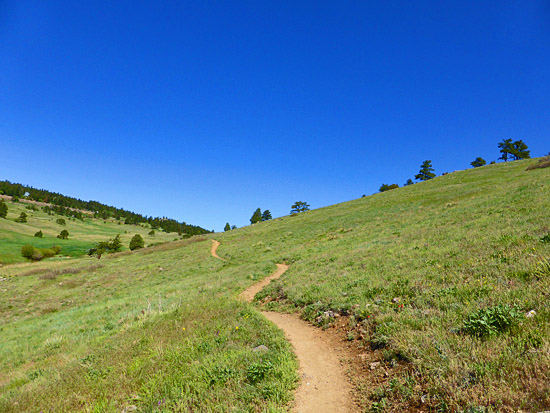 Fast singletrack on the Walker Ranch Loop
